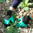 Záhradné rukavice s pazúrmi