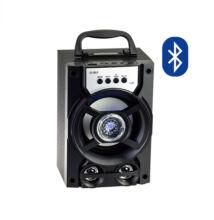 Bluetooth multimedia prehrávač TF USB AUX FM D-B13